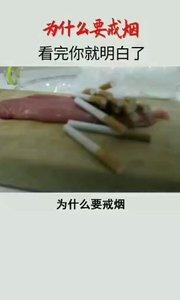 为什么要戒烟?看完视频就明白了
