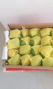 ?️要吃芒果吗