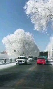 #你的城市有多冷 #生活明朗万物可爱 我们吉林今天零下24℃,铁都是甜的,不信你尝尝?