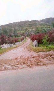 雨后的乡村