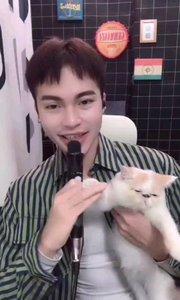 #主播的高光时刻  @谎叔 和猫猫一起的画面太萌太暖了