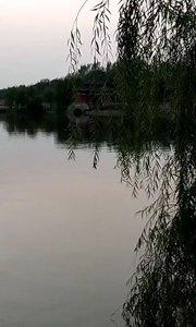 铁塔湖,我来了,想你好几天了。#又嗨又野在玩乐 #野钓 #夜钓