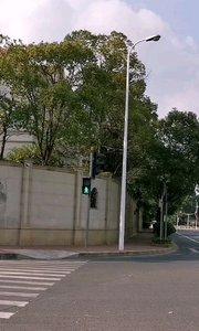 #十一月你好 翠竹路,合生东郊社区。葱绿又寂静的别墅区。