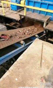 废旧金属,预碎,粉碎
