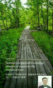 科学是分门别类的知识;智慧是井井有条的生活。——伊曼纽尔·康德