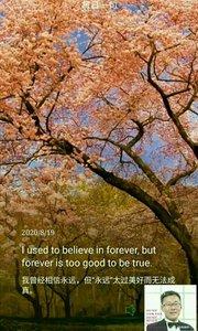 """我曾经相信永远,但""""永远""""太过美好而无法成真。"""