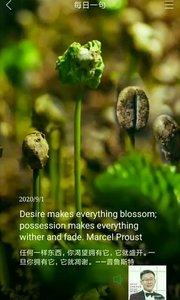 任何一样东西,你渴望拥有它,它就盛开。一旦你拥有它,它就凋谢。——普鲁斯特
