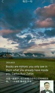 书是一面镜子,你只能看见你内心已经有的东西。——卡洛斯·鲁依斯·萨丰