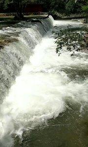 世界最美的峡谷,张家界金边溪大峡谷。关注主播哦!