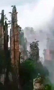 观,峰林之王 探,丛林之奇 植物的天堂,动物的王国,山的海洋,好山好水张家界[强][强][强] 来张家界,王导带您领略大自然的鬼斧神工[OK]
