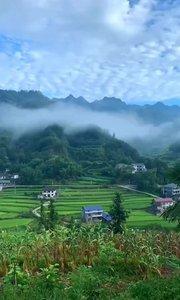 我的家乡一片绿,景色迷人 ,美丽宁静  层层梯田  !