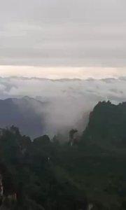 今日天子山景区别有一番美丽!