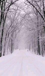 @?Pisces·秒秒 《雪落下的声音》 #雪落下的声音 #花椒音乐人 #最有才华主播 #主播的高光时刻 #我怎么这么好看   静静 在掌中结冰 相逢 是前世注定 痛并 把快乐尝尽 明明 话那么寒心 假装 那只是叮咛 泪尽 也不能相信 此生 如纸般薄命 我慢慢地听 雪落下的声音 闭着眼睛幻想它不会停 你没办法靠近 决不是太薄情 只是贪恋窗外 好风景 我慢慢地品 雪落下的声音 仿佛是你贴着我叫卿卿 睁开了眼睛 漫天的雪无情 谁来赔这一生好光景 明明 话那么寒心 假装 那只是叮咛 泪尽 也不能相信 此生 如纸