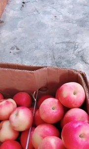 打扰一下,我只想看看五斤肉等于几个苹果?#猪小屁