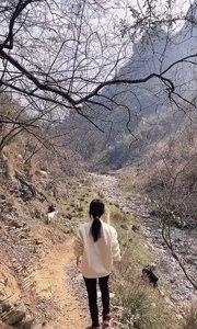 不要问我去哪里了,我在村里放羊?~#身边正能量