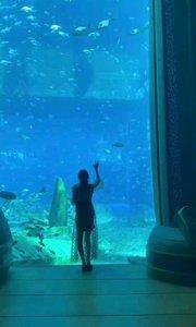 三亚水族馆~我可以逛一天