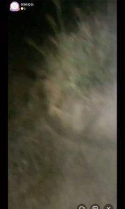 """中元节探秘""""诡异学校""""第二集#9月原创视频达人赛 #精彩录屏赛 #9月打卡挑战 #又嗨又野在玩乐 #新人报道请多关照"""