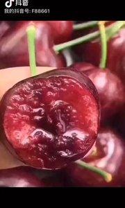 烟台大樱桃,红灯,果大味甜,现摘现卖,全国顺丰包邮,樱桃?营养价值高,想买的找我