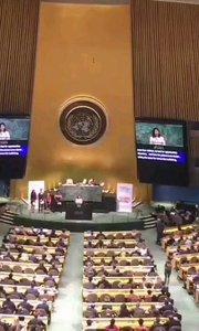 联合国可持续发展目标(纽约)