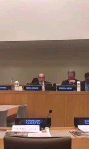 联合国可持续发展会议