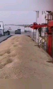 ?农产品国际贸易合作 #美中国际贸易 ?