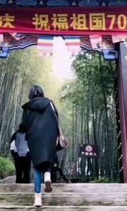 禅茶养生西九华山