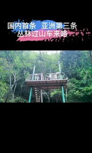 #网约湘游  #天岳幕阜山 从密林中飞出,凌空驰骋。这个丛林过山车有点酷!
