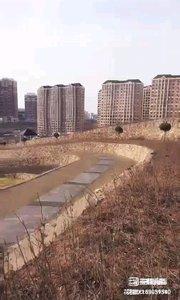 大连的植物园