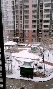 下雪了能杀【嘀~】祝亲们身体健康