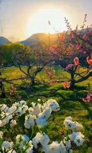 今天是国际护士节,感恩我们的白衣天使们[爱心]  您的守护,是爱的起点,感恩有您?