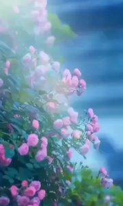 哪有那么多天注定,所有看似幸运和巧合的事,都来源于悄悄努力。