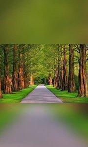 路是自己选的 路是自己走的 跌倒,受伤,彷徨 我们都要学会承受,学会疗伤 希望我们变得开心,变得更好!
