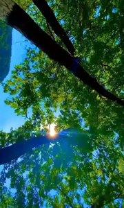 无论岁月如何变迁,时空如何转换 心有善良,都是我们生活中不可缺少的品质。