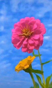 心存感恩,努力做好自己,是一种生活的智慧  内心有力量,天天阳光明媚!生活更加美丽充实!
