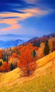 人生最好的状态,是每天醒来,面朝阳光,嘴角上扬。不羡慕谁,不讨好谁,默默努力,活成自己想要的模样。