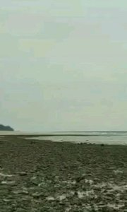 滨滨带你去旅行涠洲岛野时莫迟客栈 贝壳沙滩了解一下#主播的高光时刻