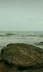 一个人的贝壳沙滩#新主播来报道
