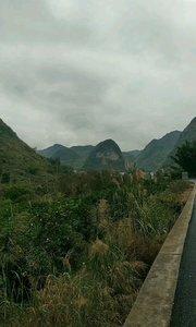 多彩贵州漫山遍野的大橙子#风里雨里我在花椒等你