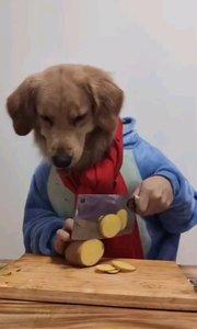 狗子文化练到家,距研究发现这是动画片看多造成,的超前思维能力