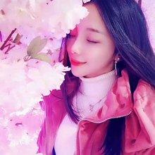 花开花落又一季。