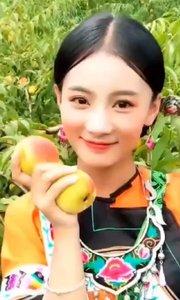 湘西十八洞原生态黄桃 口感脆甜[色][色][色] 需要订购的可以私信我哈?