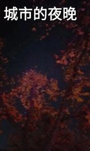 #2020巅峰之战原创达人赛 #我和我的家乡 秋天的夜晚很美,空气真好,锻炼身体,强健体魄。#十一月打卡挑战 #熬夜宝贝做什么 #秋日运动不停歇 #颜即是正义 #新人报道请多关照