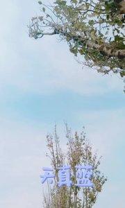 #十一月打卡挑战 蓝天白云☁晴空万里#颜即是正义 #新人报道请多关照 #又嗨又野在玩乐 #花椒好声音