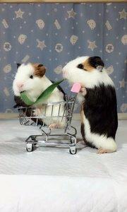 逛超市去喽