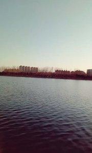 2020年北京的今天又是晴空万里万里无云!可惜没有风!空气还不错!红鲤鱼与绿鲤鱼与驴!?✈??