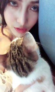 日常猫?️