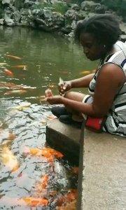 温馨的喂鱼