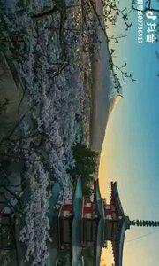 日本富士山的一天风景