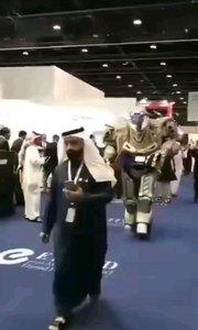 狮子豹子老虎算啥?阿拉伯土豪现在新宠物是机器人?!!!有钱任性!