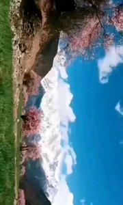 西藏太美……